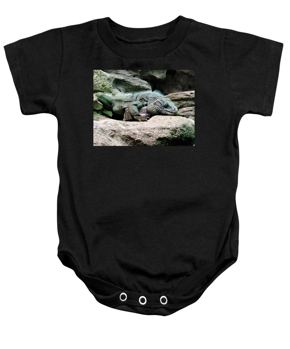 Lizard Baby Onesie featuring the photograph Grand Cayman Blue Iguana by Angelina Tamez