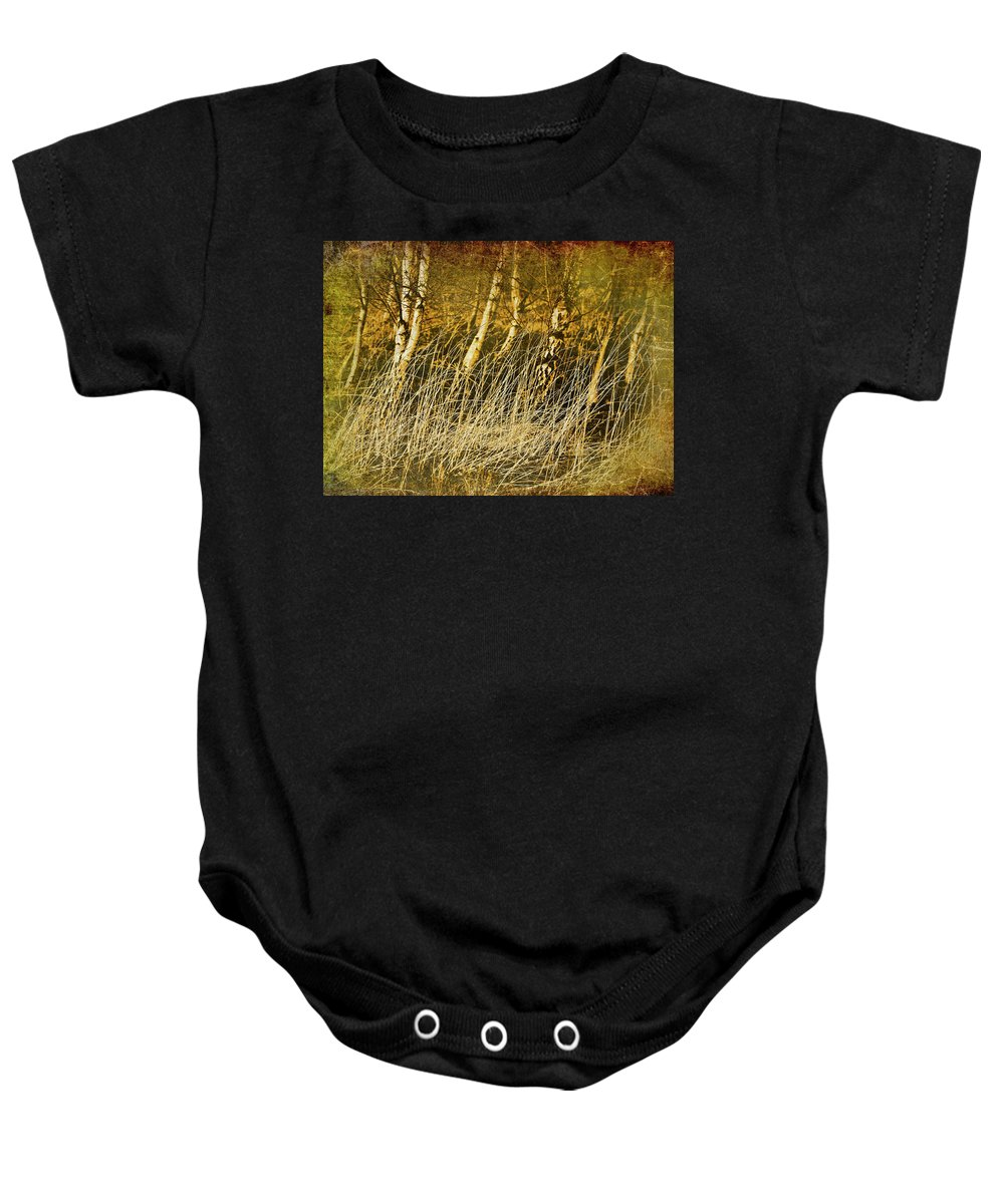 Birch Baby Onesie featuring the photograph Grass And Birch by Meirion Matthias