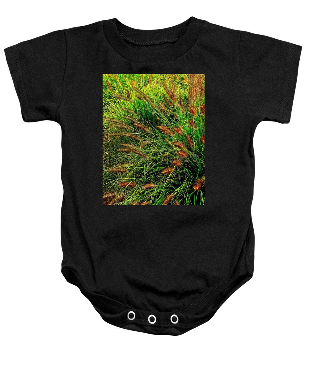 Grass Baby Onesie featuring the photograph Grasses In The Verticle by Ian MacDonald