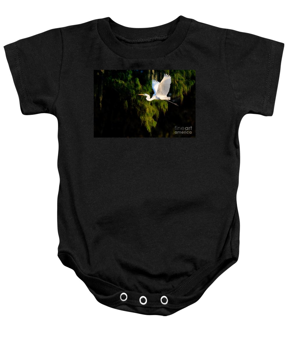 Great Egret Baby Onesie featuring the photograph Great Egret by Matt Suess