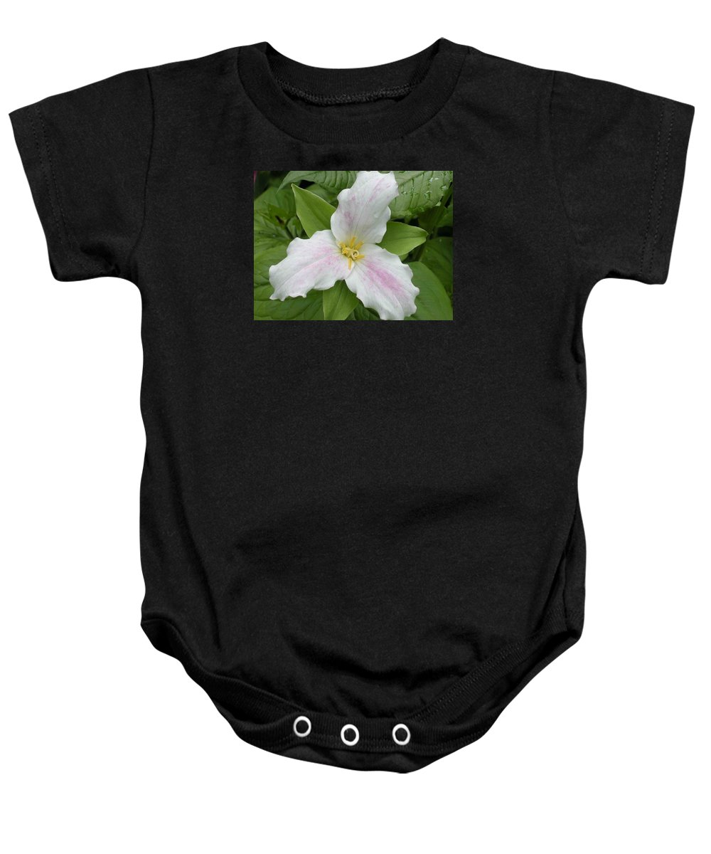 Trillium Baby Onesie featuring the photograph Great White Trillium by Nelson Strong