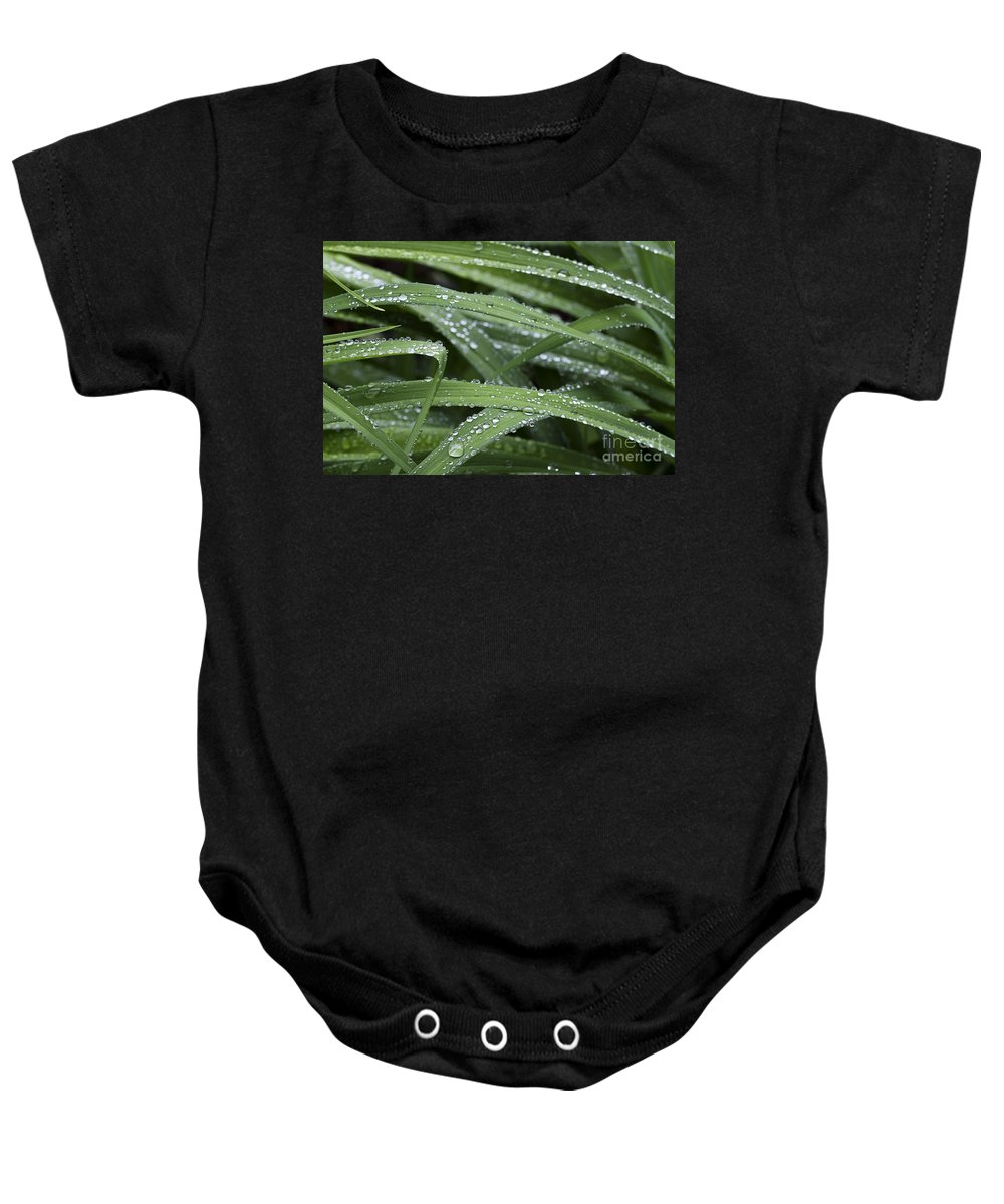 Nature Baby Onesie featuring the photograph Green With Rain Drops by Deborah Benoit