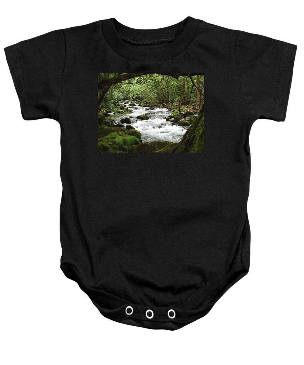 Smoky Mountains Baby Onesie featuring the photograph Greenbrier River Scene 2 by Nancy Mueller