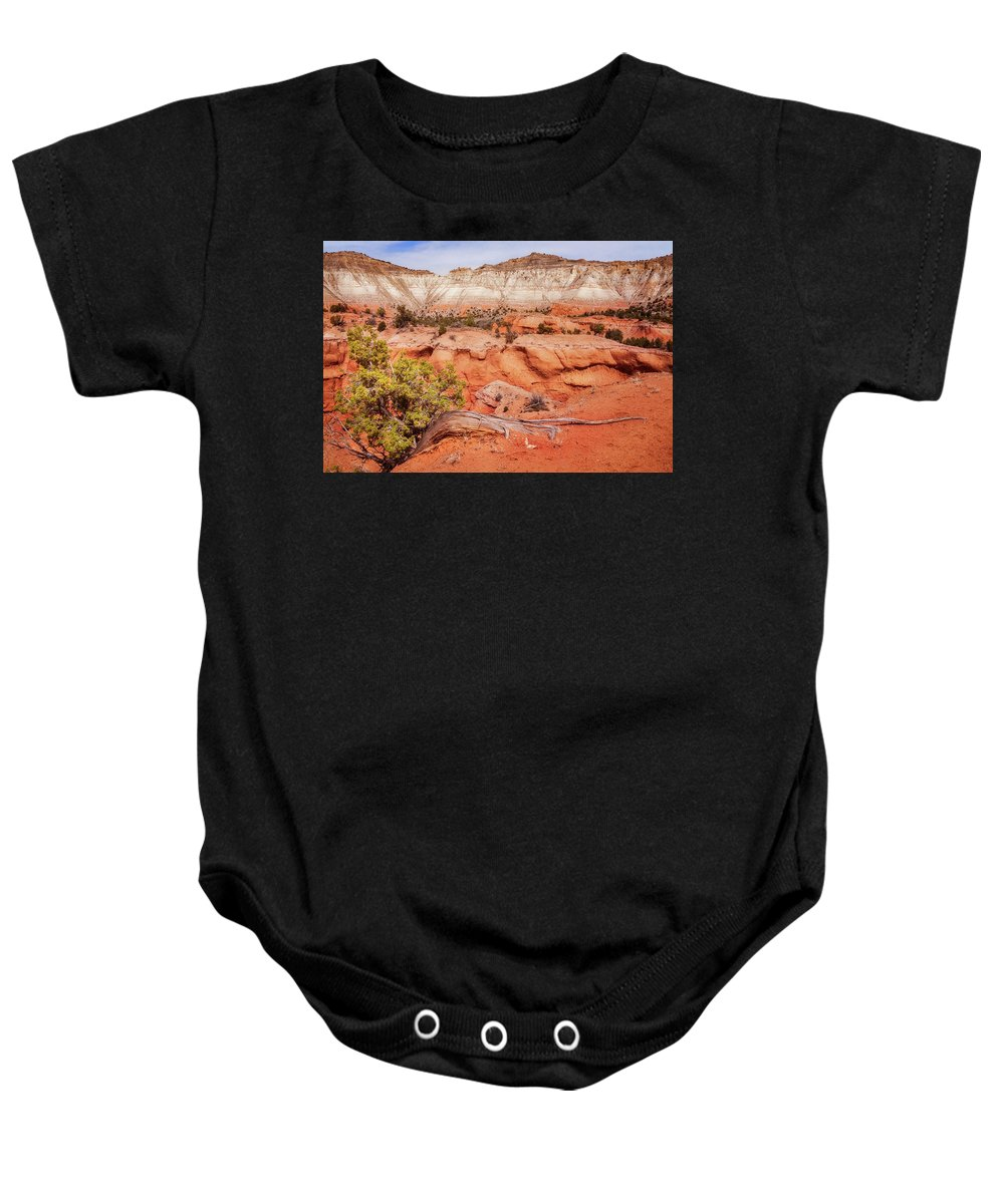 Bryce Baby Onesie featuring the photograph Hanging On The Cliff At Kodachrome Basin State Park by Daniela Constantinescu
