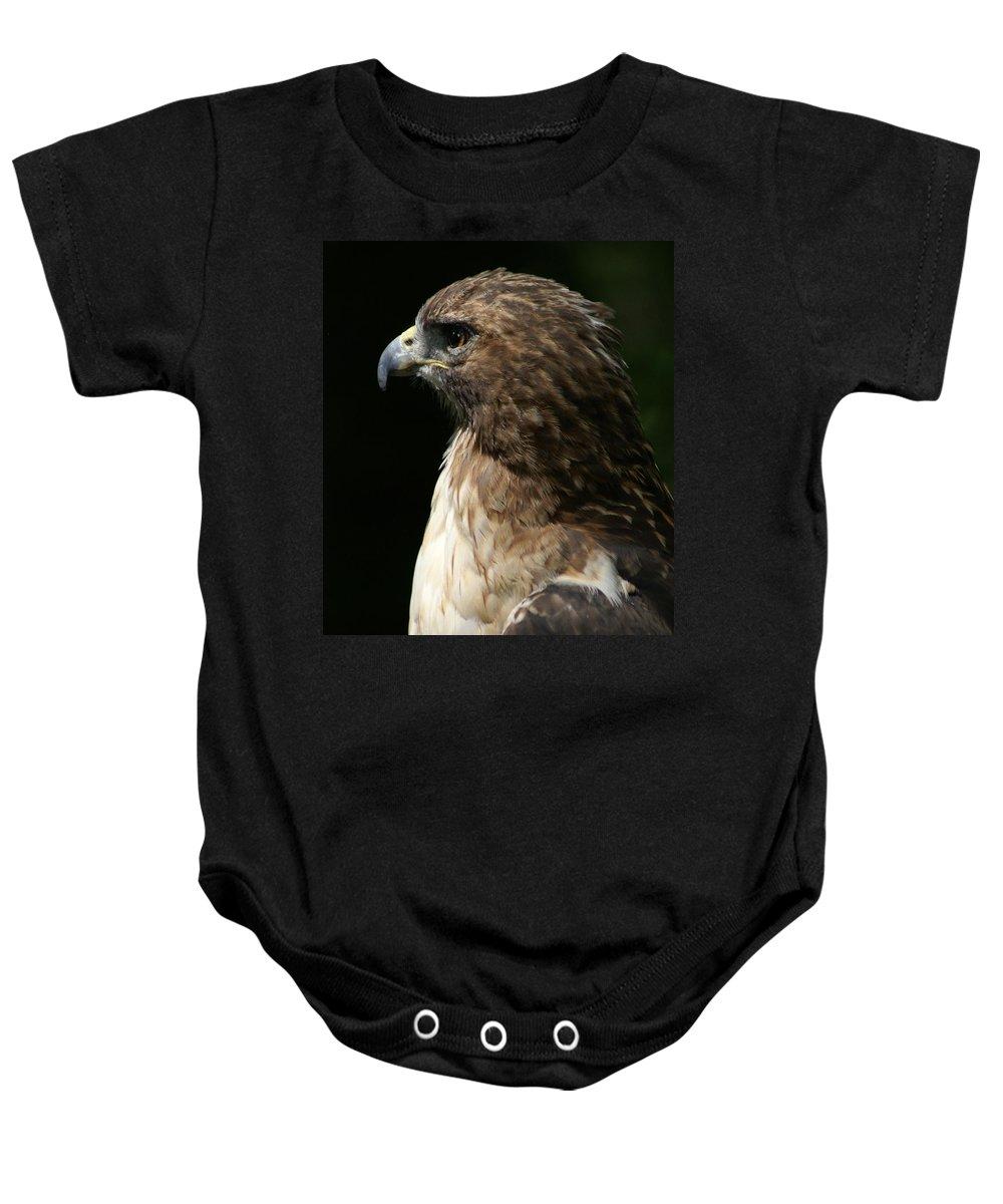 Hawk Baby Onesie featuring the photograph Hawk Portrait by Heather Coen