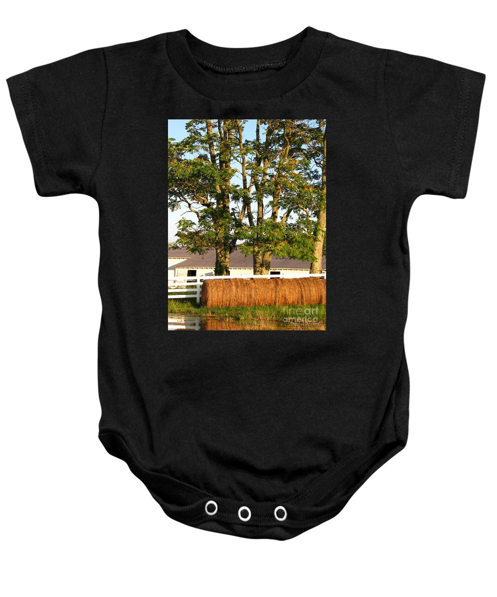 Landscape Baby Onesie featuring the photograph Hay Bales And Trees by Todd Blanchard