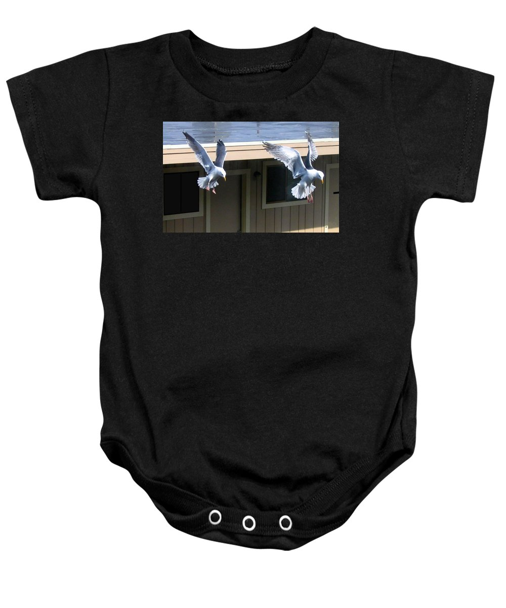 Seagulls Baby Onesie featuring the photograph High Spirits by Will Borden