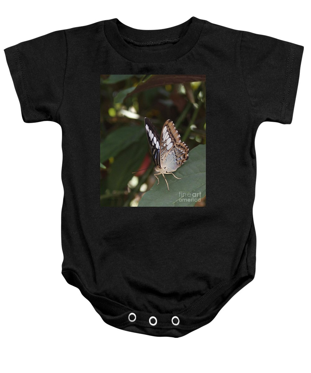 Butterfly Baby Onesie featuring the photograph Hints Of Blue by Shelley Jones