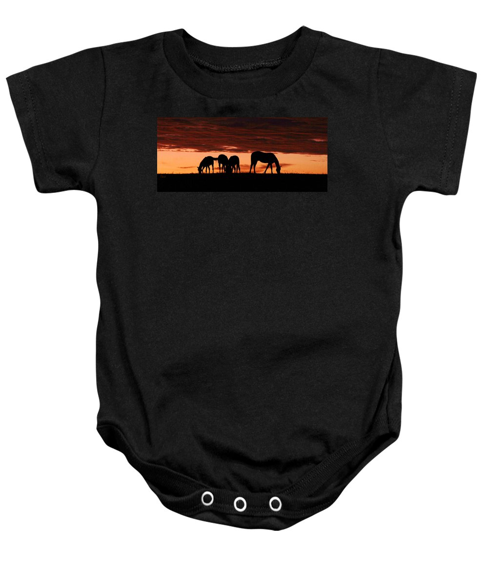 Horses Baby Onesie featuring the photograph Horses At Sunset by Tina Meador