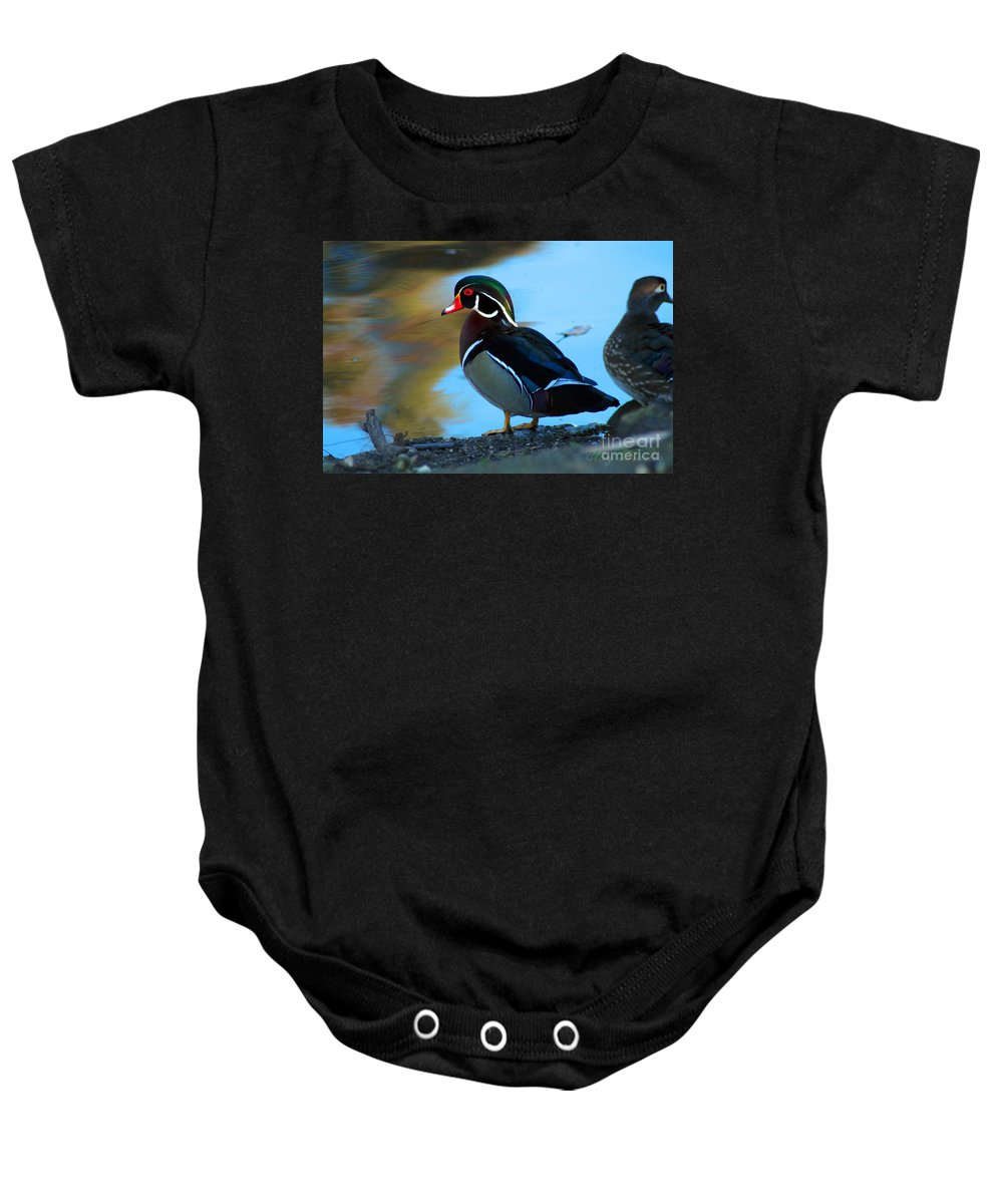 Clay Baby Onesie featuring the photograph How Much Wood Could A Wood Duck Chuck by Clayton Bruster