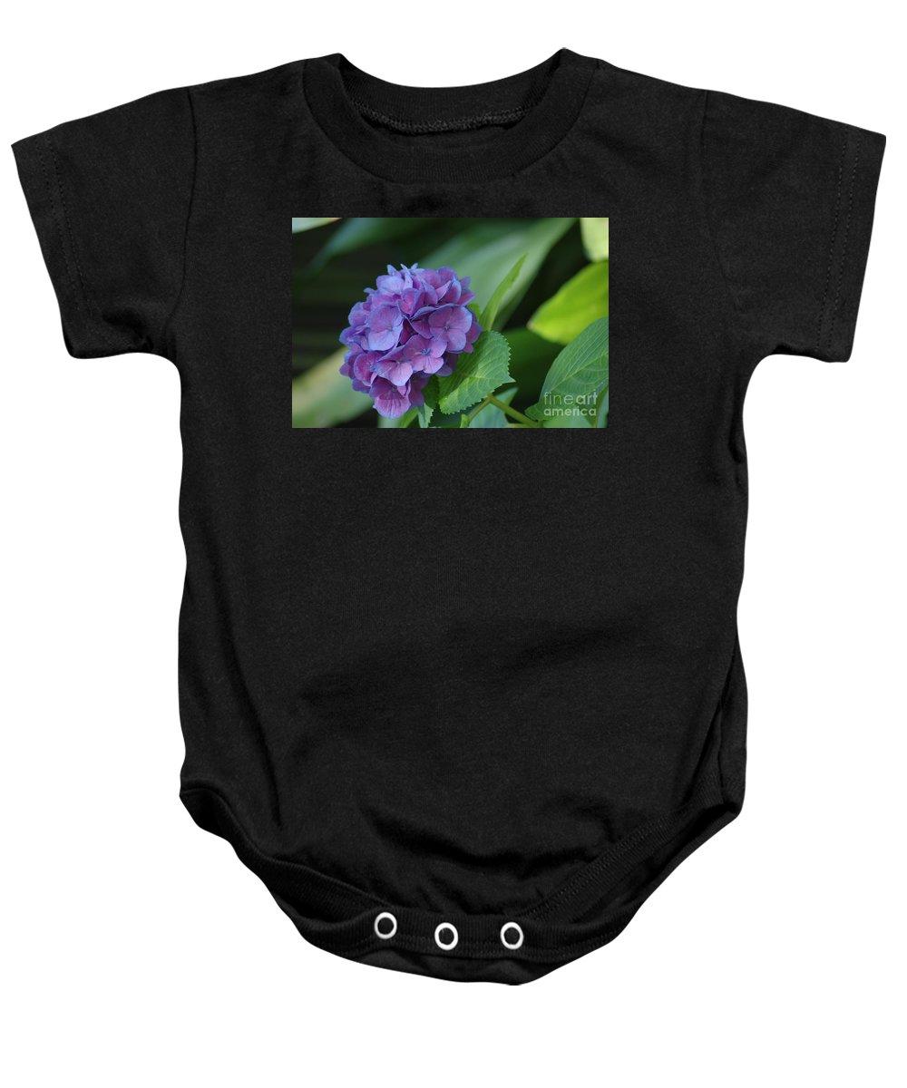 Flower Baby Onesie featuring the photograph Hydrangea by Donna Bentley