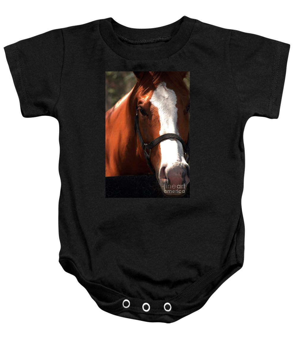 Horse Baby Onesie featuring the photograph I Was Waiting For You by Susanne Van Hulst