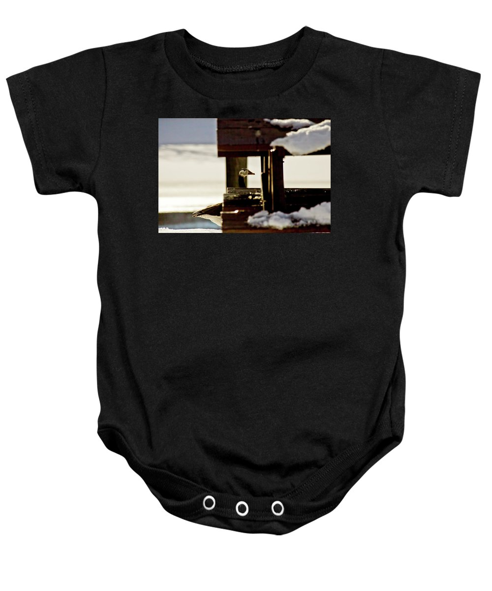 Goose Baby Onesie featuring the photograph In Plain Sight by Albert Seger