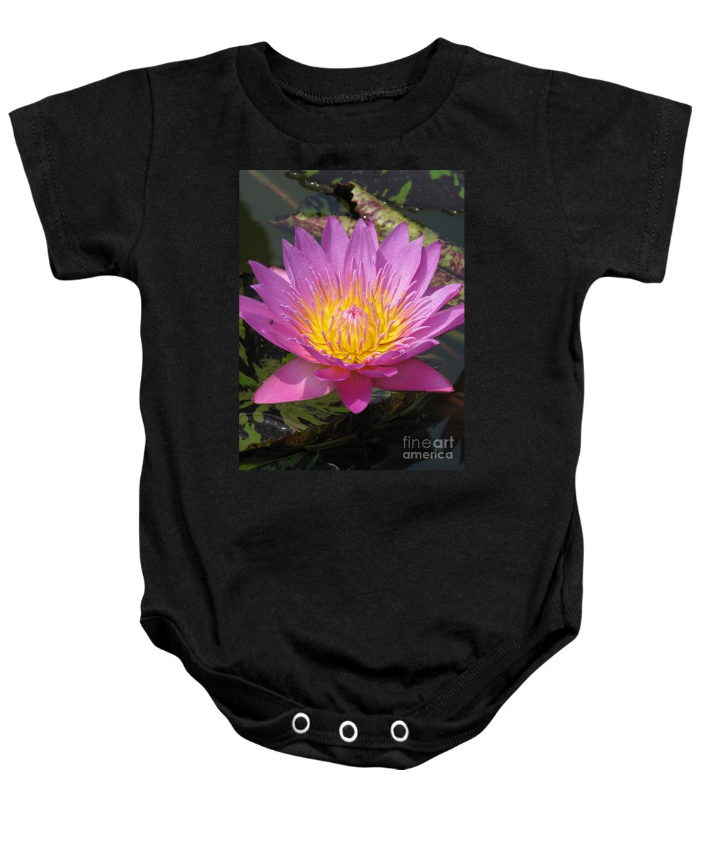 Lotus Baby Onesie featuring the photograph In position by Amanda Barcon