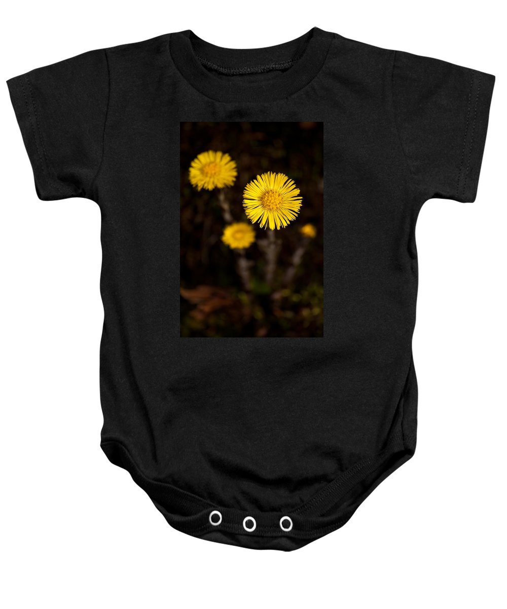 Wildflowers Baby Onesie featuring the photograph In The Limelight by Irwin Barrett