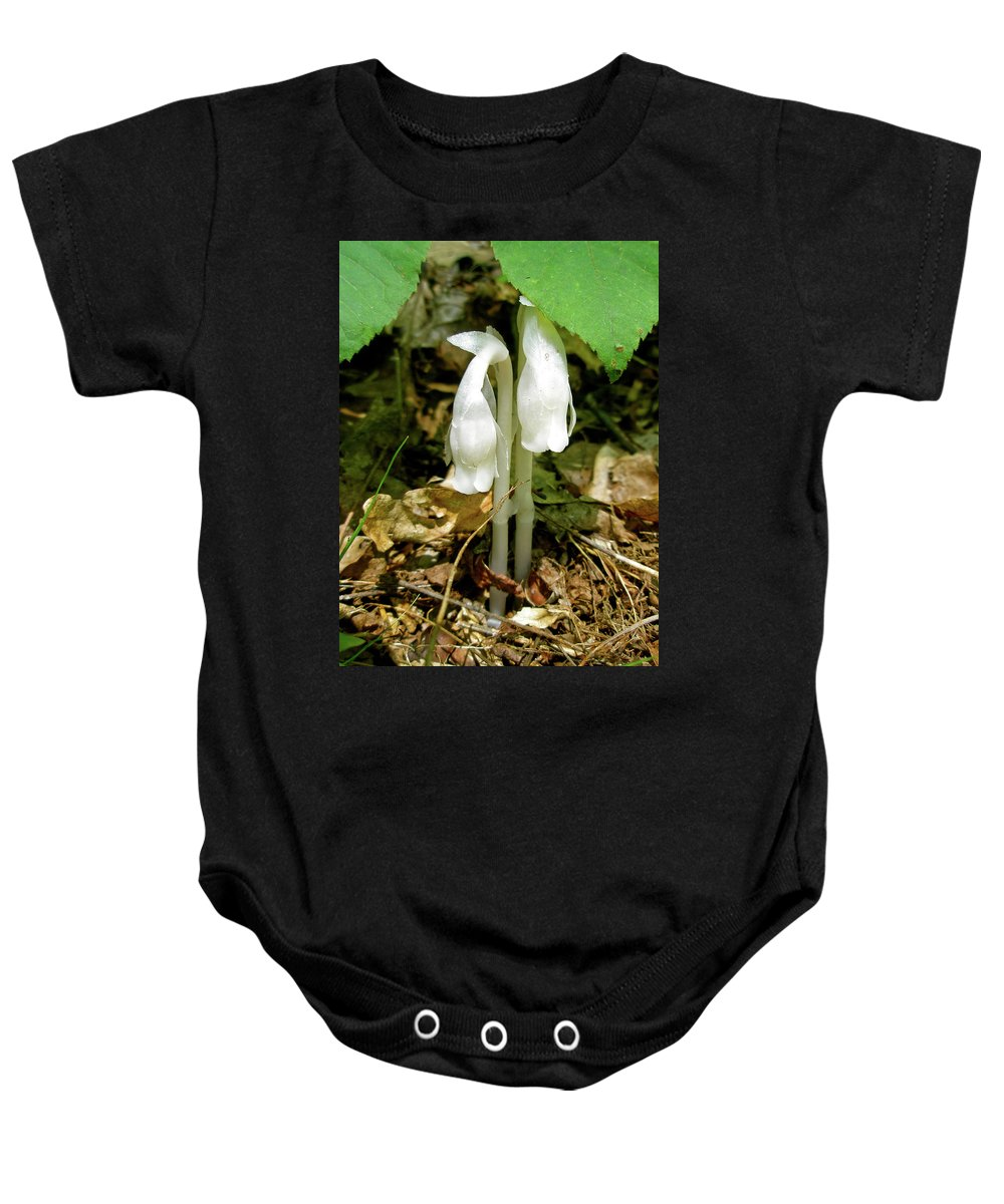 indian Pipes Baby Onesie featuring the photograph Indian Pipes - Monotropa Uniflora by Mother Nature