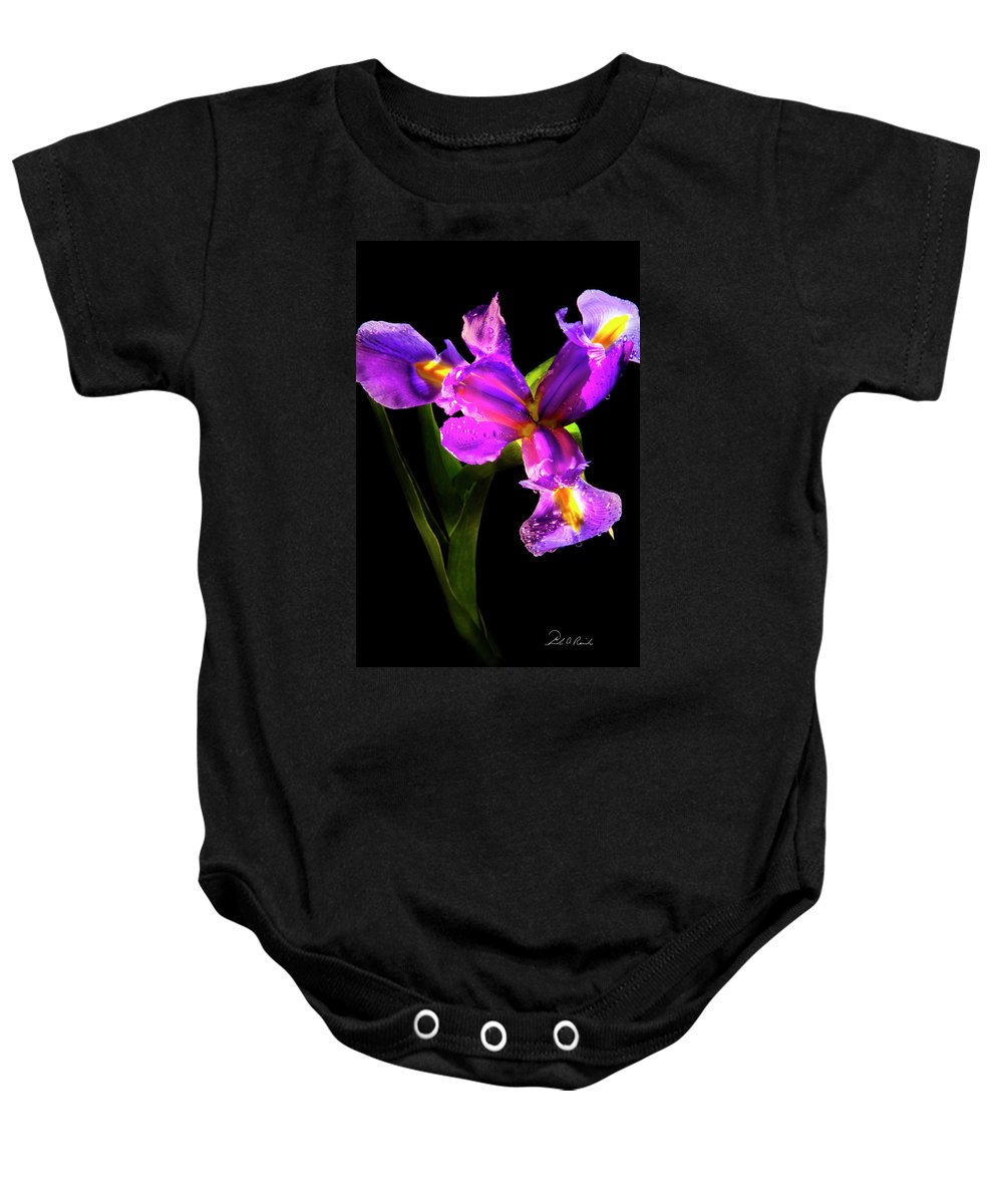 Color Baby Onesie featuring the photograph Iris Bloom Two by Frederic A Reinecke
