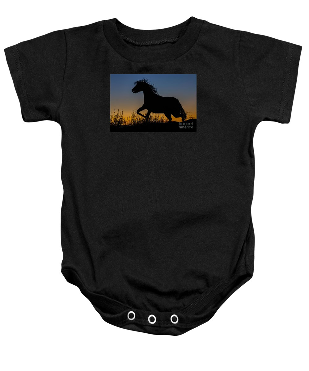 Photography Baby Onesie featuring the photograph Iron Horse by Daniel Knighton
