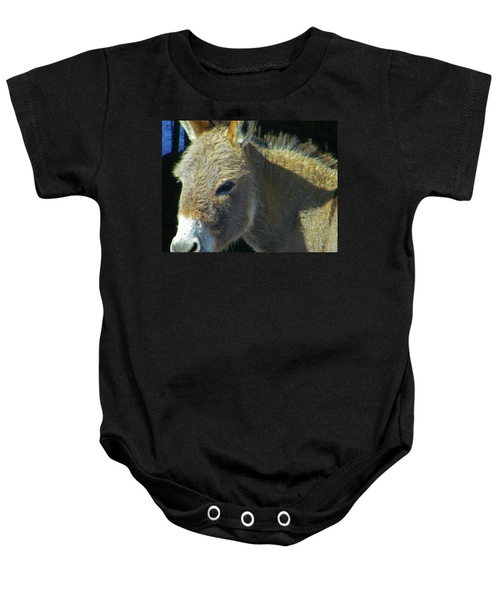Abstract Baby Onesie featuring the photograph Jasper by Lenore Senior