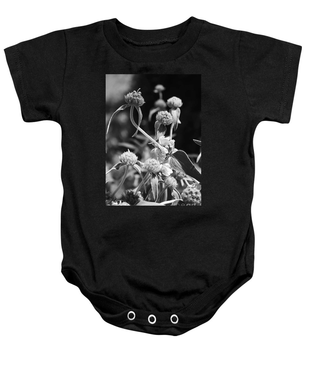 Herbs Baby Onesie featuring the photograph Jerusalem Sage by Kathy McClure