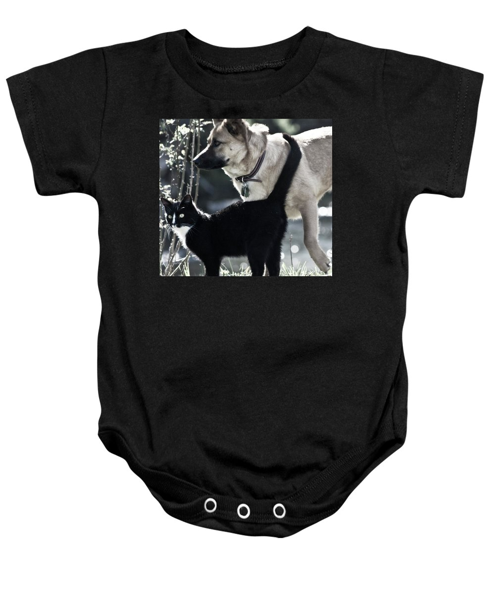Dog And Cat Baby Onesie featuring the photograph Journey by Betsy Knapp