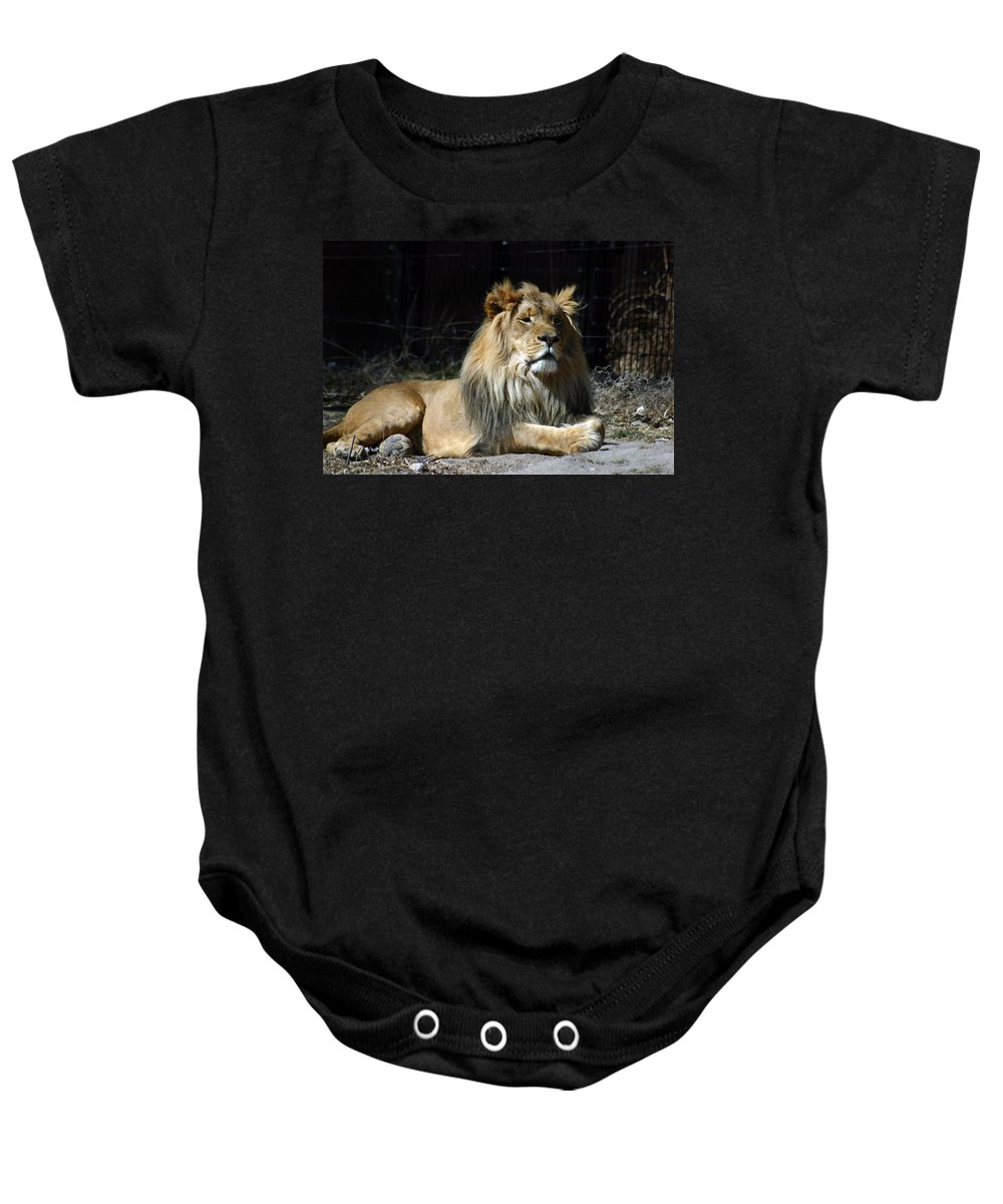 Lion Baby Onesie featuring the photograph King by Anthony Jones