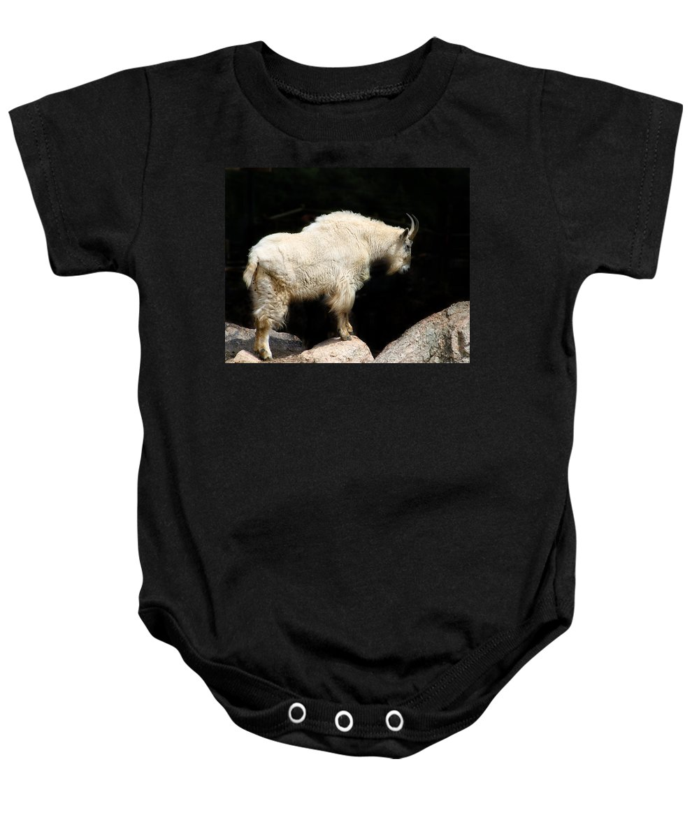 Wildlife Baby Onesie featuring the photograph King Of The Mountain by Anthony Jones