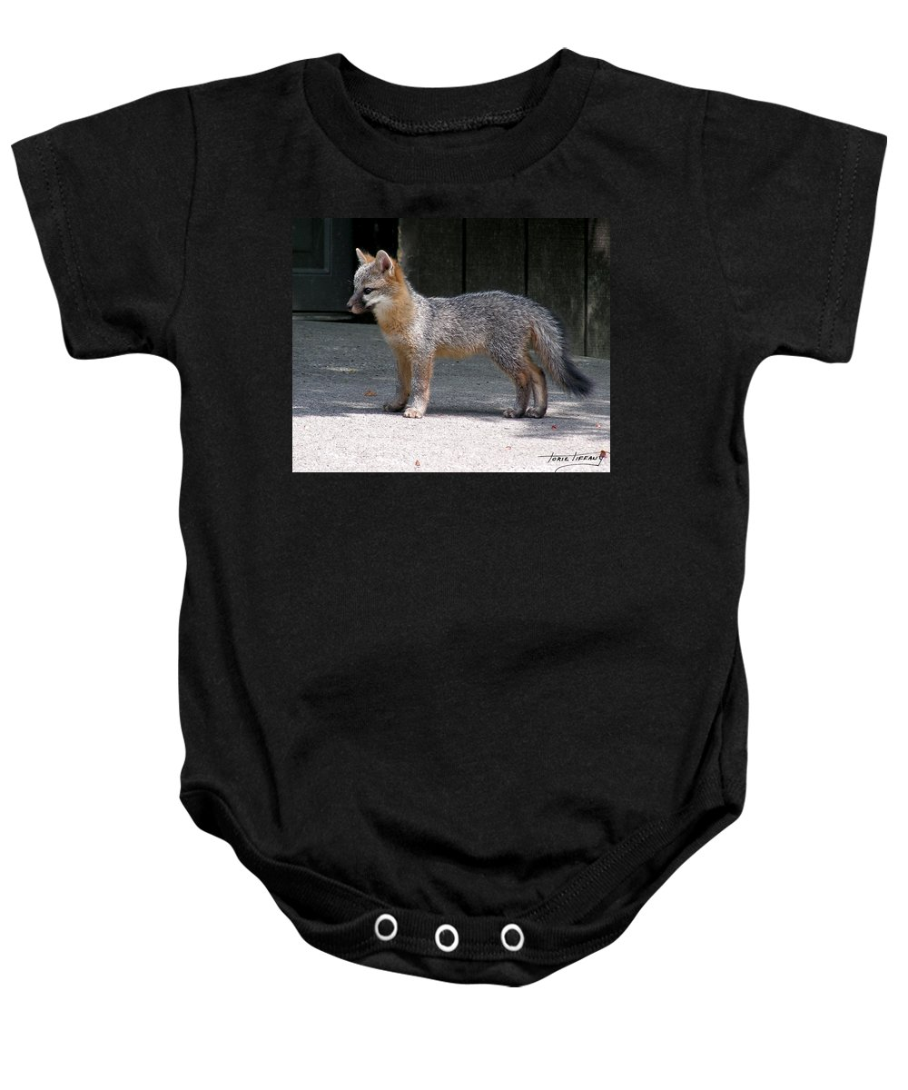 Kit Fox Baby Onesie featuring the photograph Kit Fox14 by Torie Tiffany