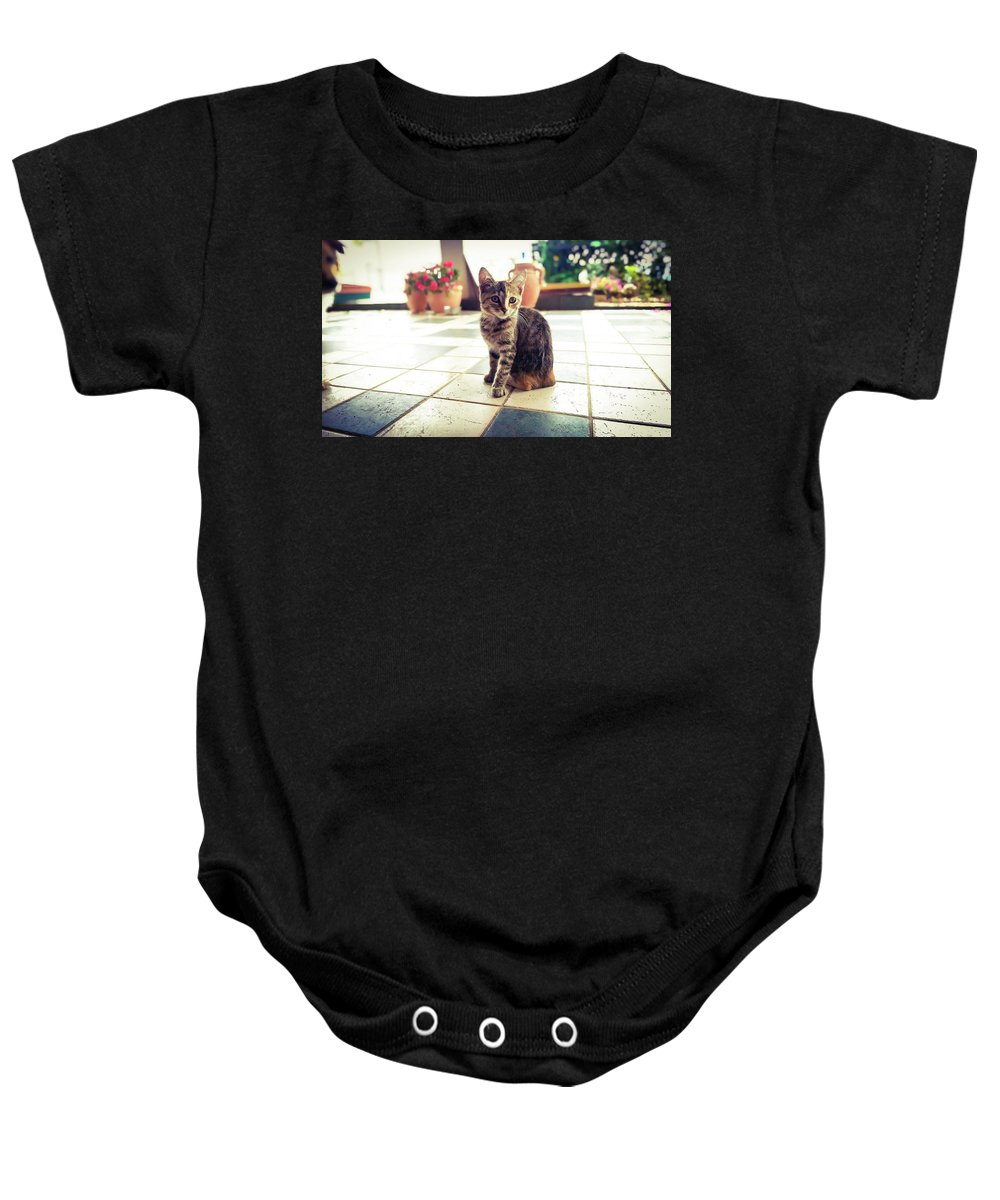 Cat Baby Onesie featuring the painting Kitcat by Mihovil Crnic