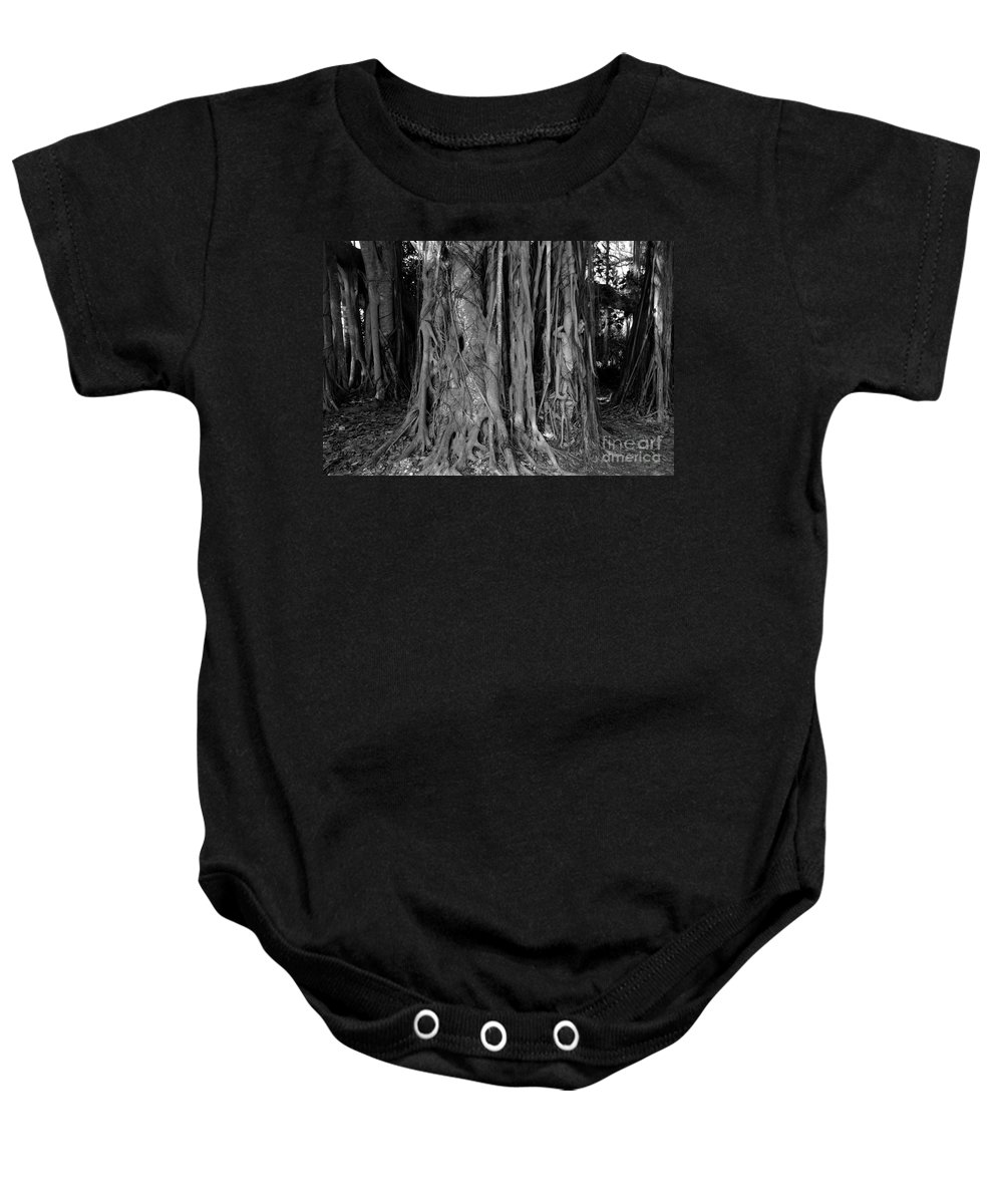 Banyan Trees Baby Onesie featuring the photograph Lady In The Banyans by David Lee Thompson