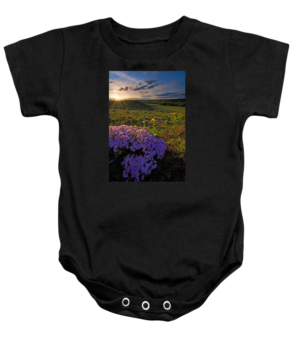 Wildflowers Baby Onesie featuring the photograph Last Light Of Spring by Mike Dawson