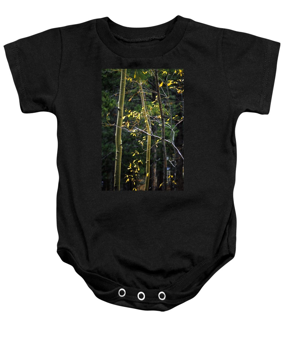 Aspen Baby Onesie featuring the photograph Late Aspen by Jerry McElroy