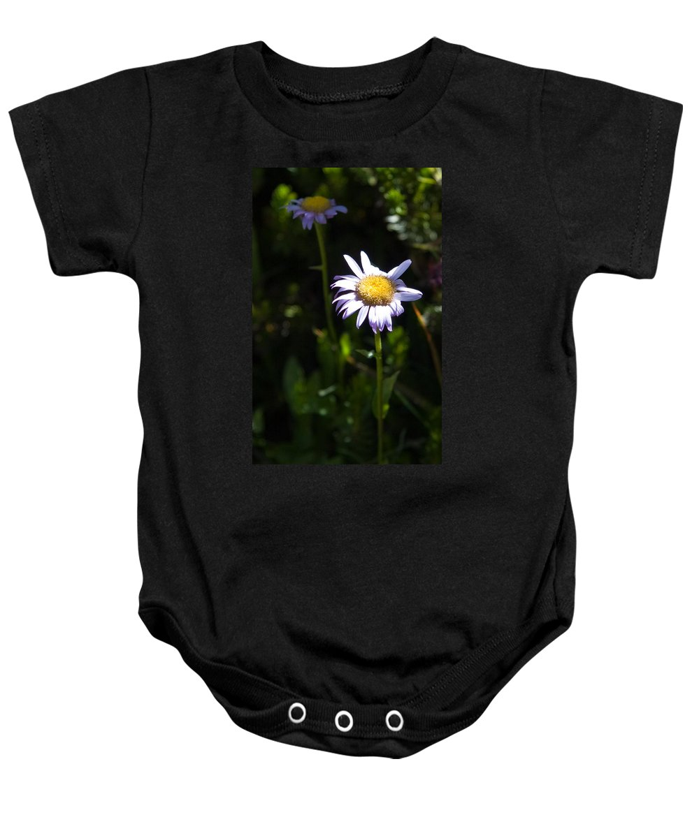 Lavender Wild Flowers Baby Onesie featuring the photograph Lavender Friends by Chris Brannen