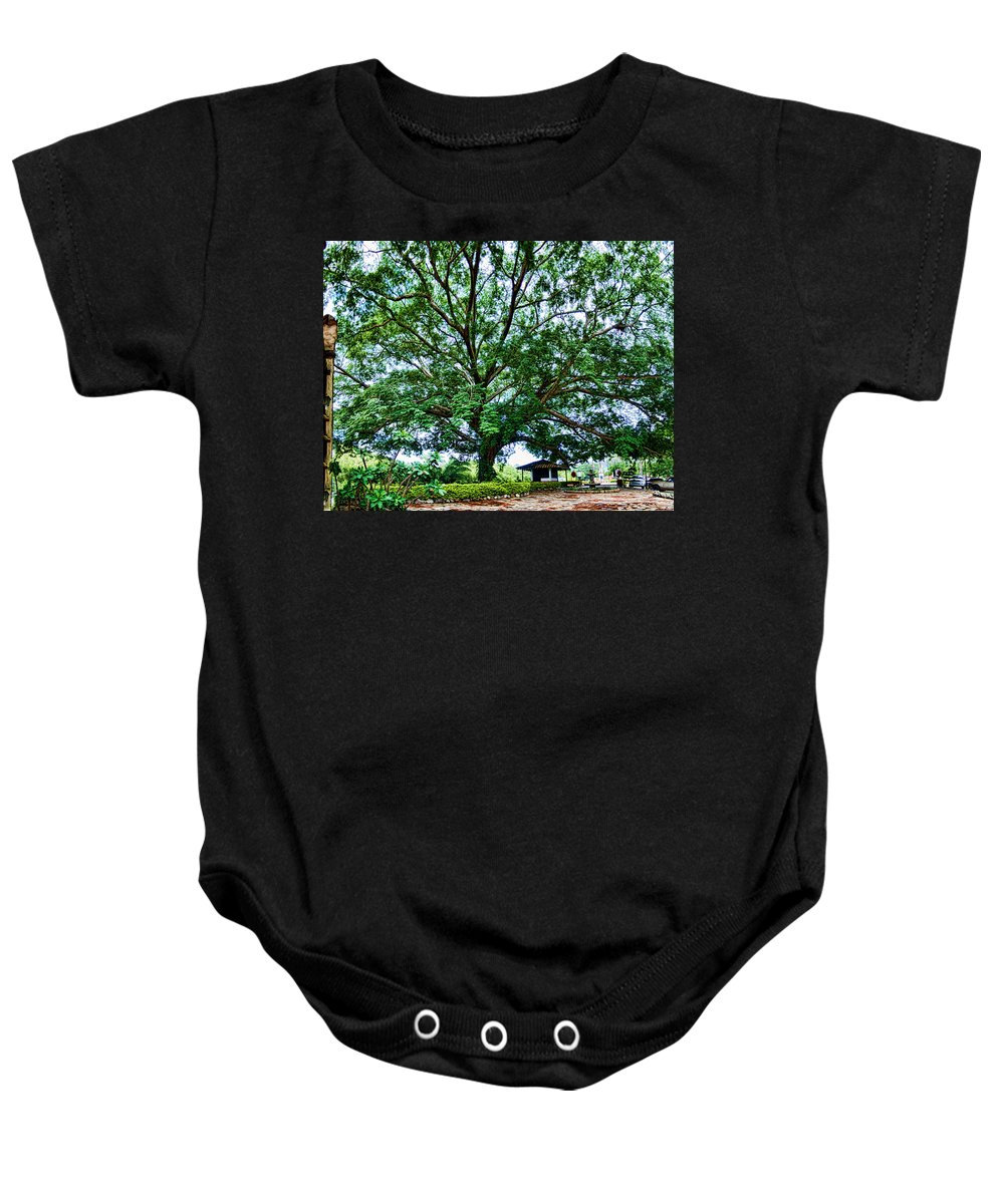 Tree Baby Onesie featuring the photograph Leafy Tree by Galeria Trompiz