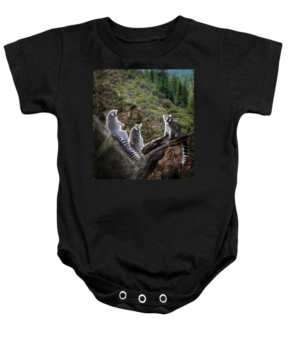 Nature Photography Baby Onesie featuring the photograph Lemur Family by Melinda Hughes-Berland