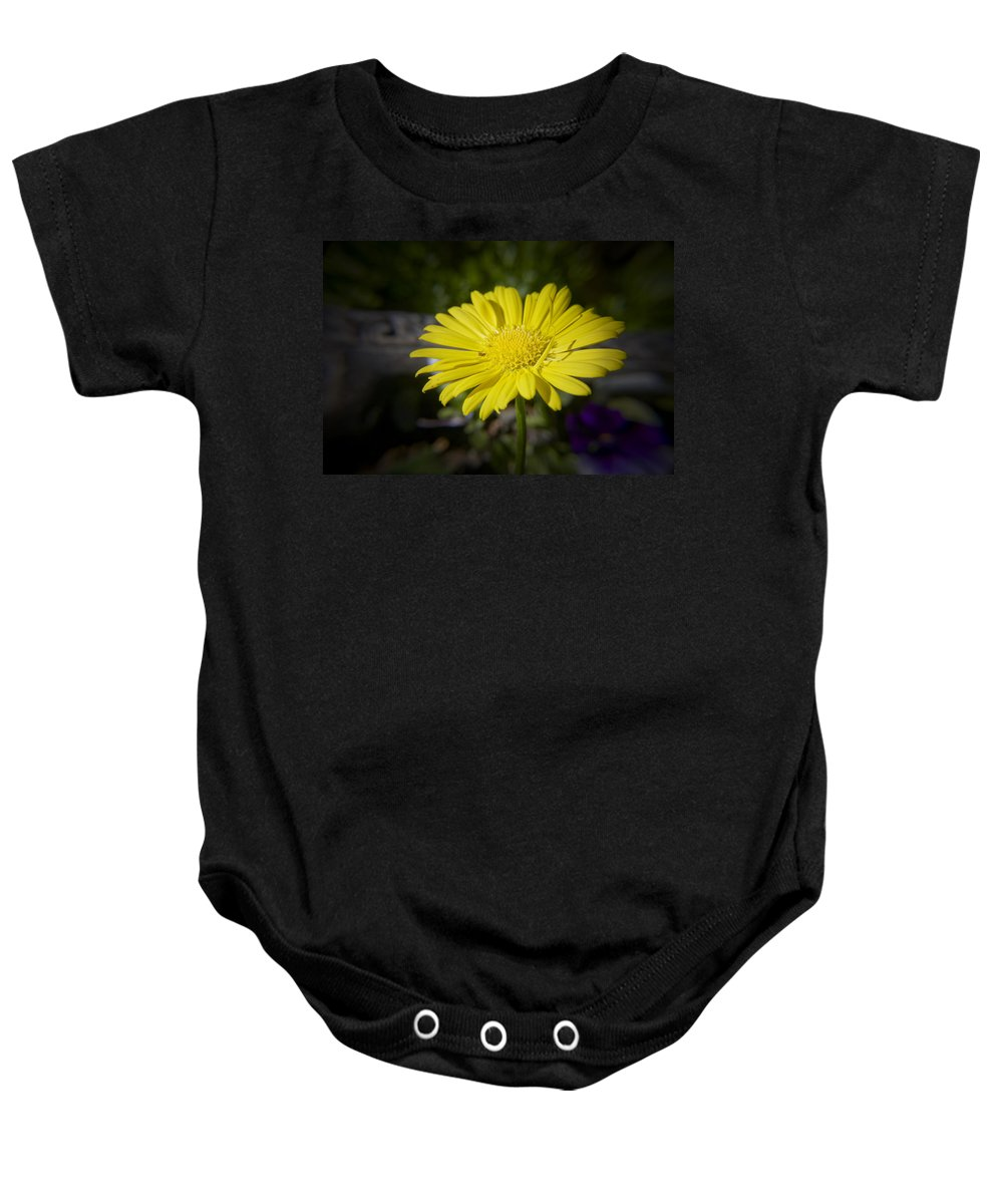 Leopard's Baby Onesie featuring the photograph Leopard's Bane by Teresa Mucha