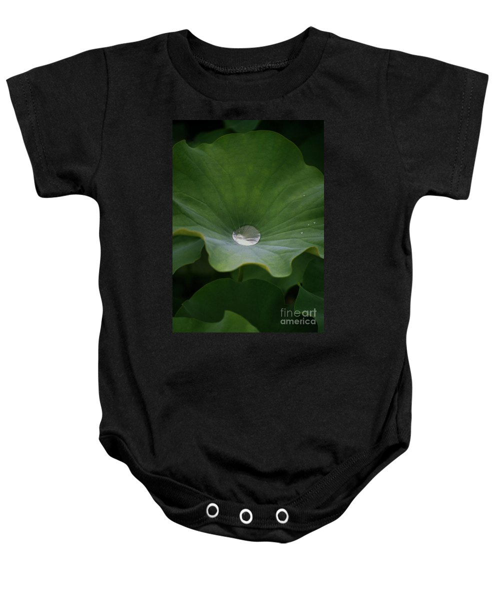 Plant Baby Onesie featuring the photograph Life by Richard Rizzo