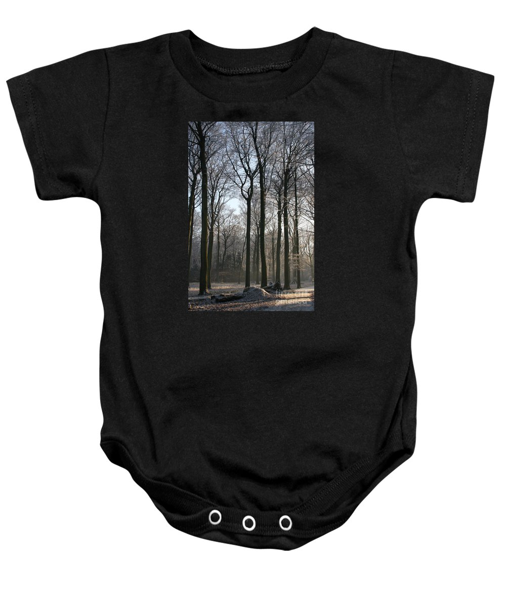 Tree Baby Onesie featuring the photograph Light And Swadows by Christiane Schulze Art And Photography