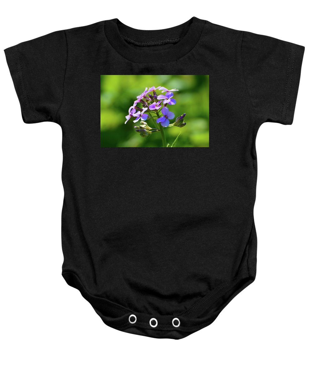 Nature Baby Onesie featuring the photograph Light Purple Flowers by Lyle Crump