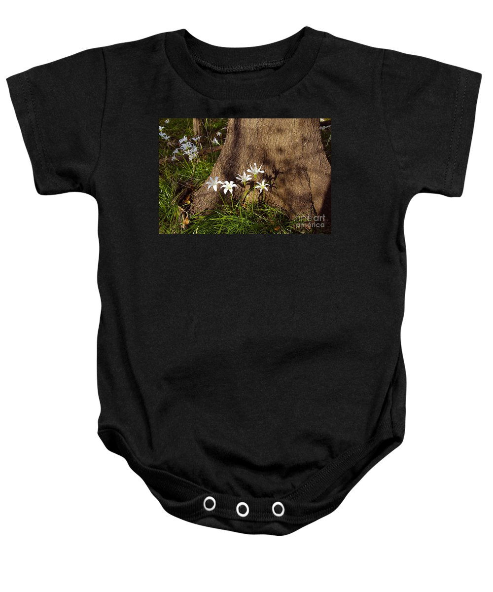 Atamasco Baby Onesie featuring the photograph Lily's Atamasco by David Lee Thompson