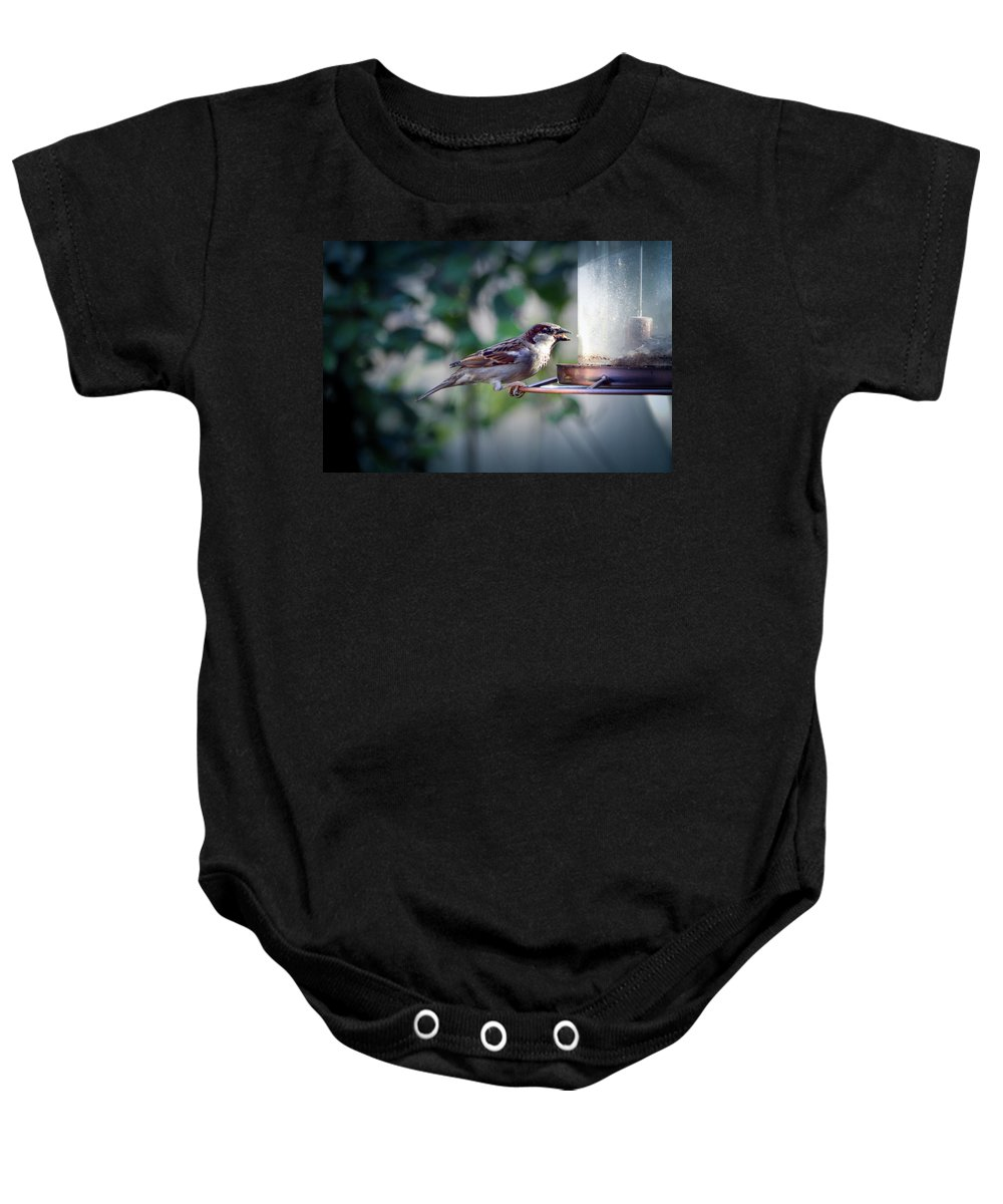 Birds Baby Onesie featuring the photograph Little Friend Visitor by Christopher Saleh