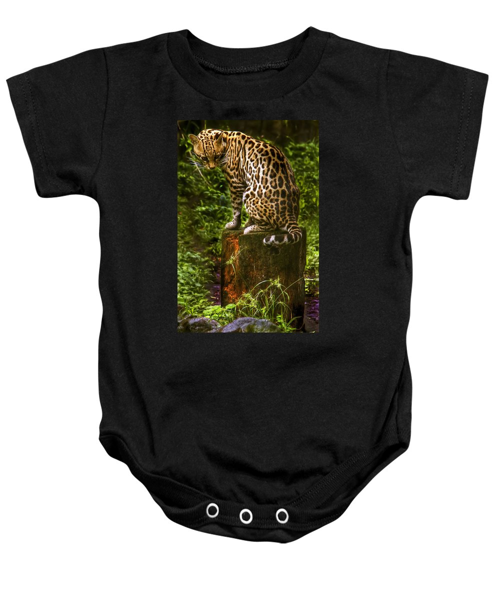 Maguay Baby Onesie featuring the photograph Little Lottie by Dolly Sanchez