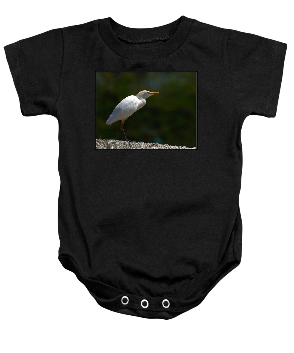 Little Baby Onesie featuring the photograph Little White Heron by Galeria Trompiz
