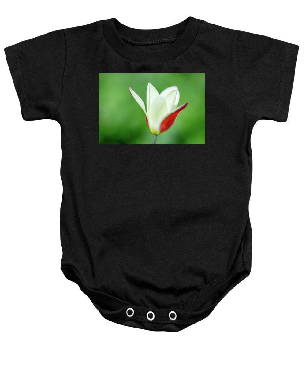 Tulip Baby Onesie featuring the photograph Lonely Lady Tulip by Jess Kruk