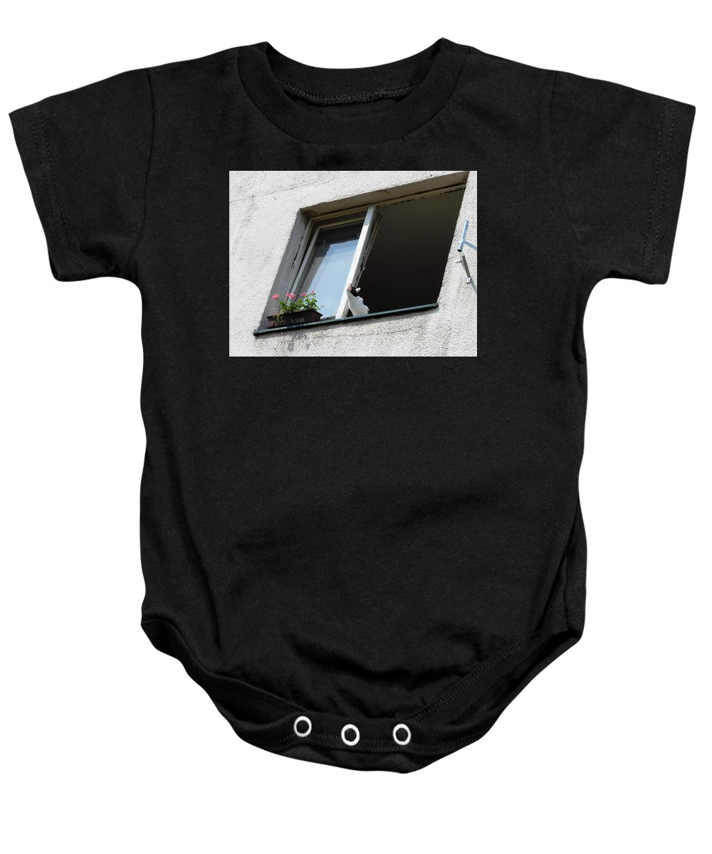 Cat Baby Onesie featuring the photograph Looking Up by Valerie Ornstein