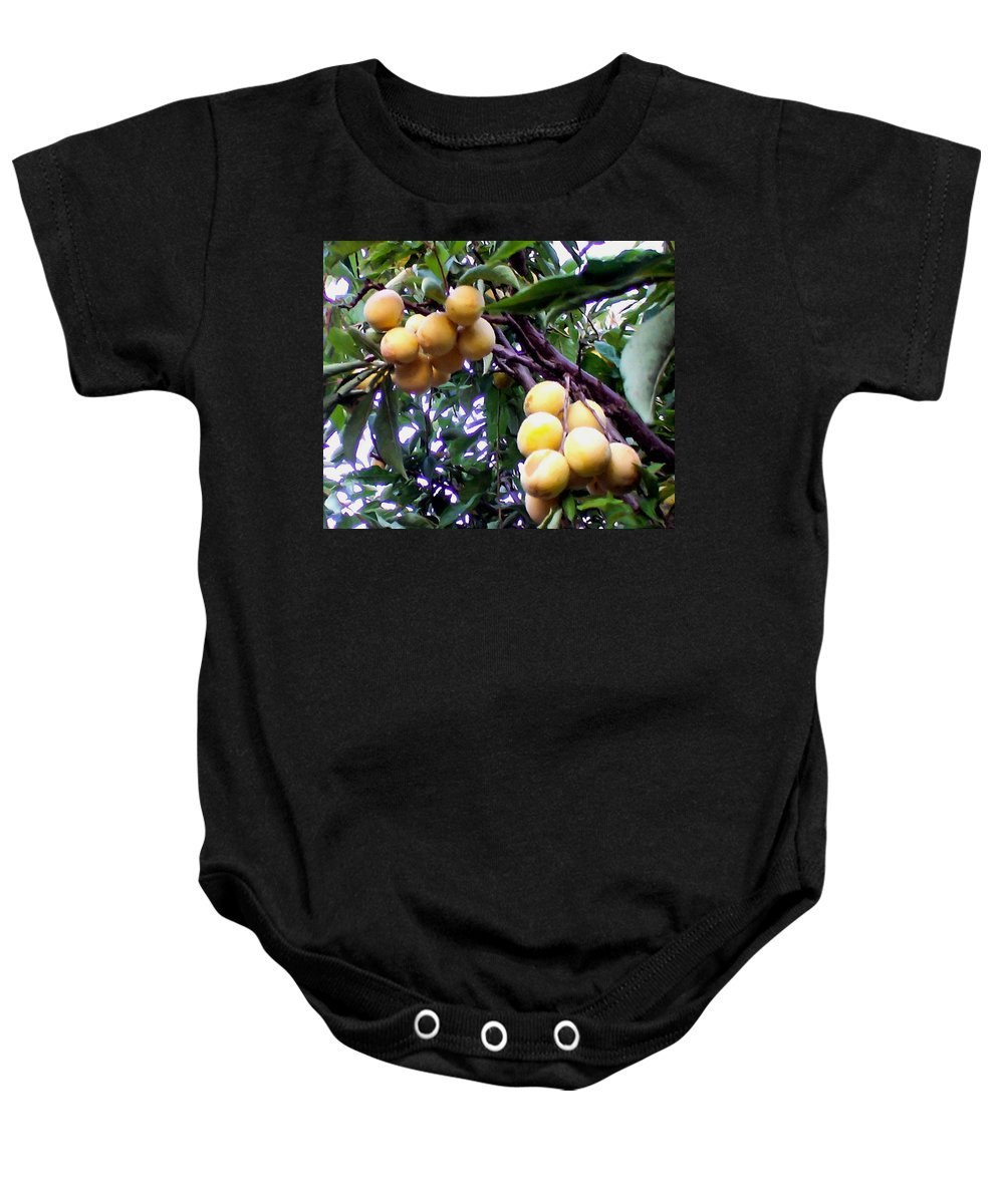 Loquats In The Tree Baby Onesie featuring the painting Loquats In The Tree 1 by Jeelan Clark