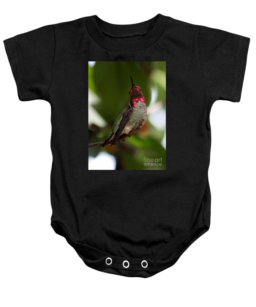 Hummingbird Baby Onesie featuring the photograph Lovely Ruby Red by Carol Groenen