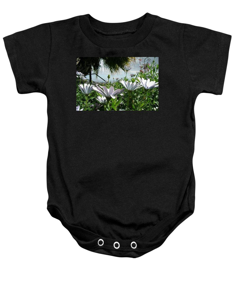 Landscape Baby Onesie featuring the photograph Madeira Daisies by Valerie Ornstein