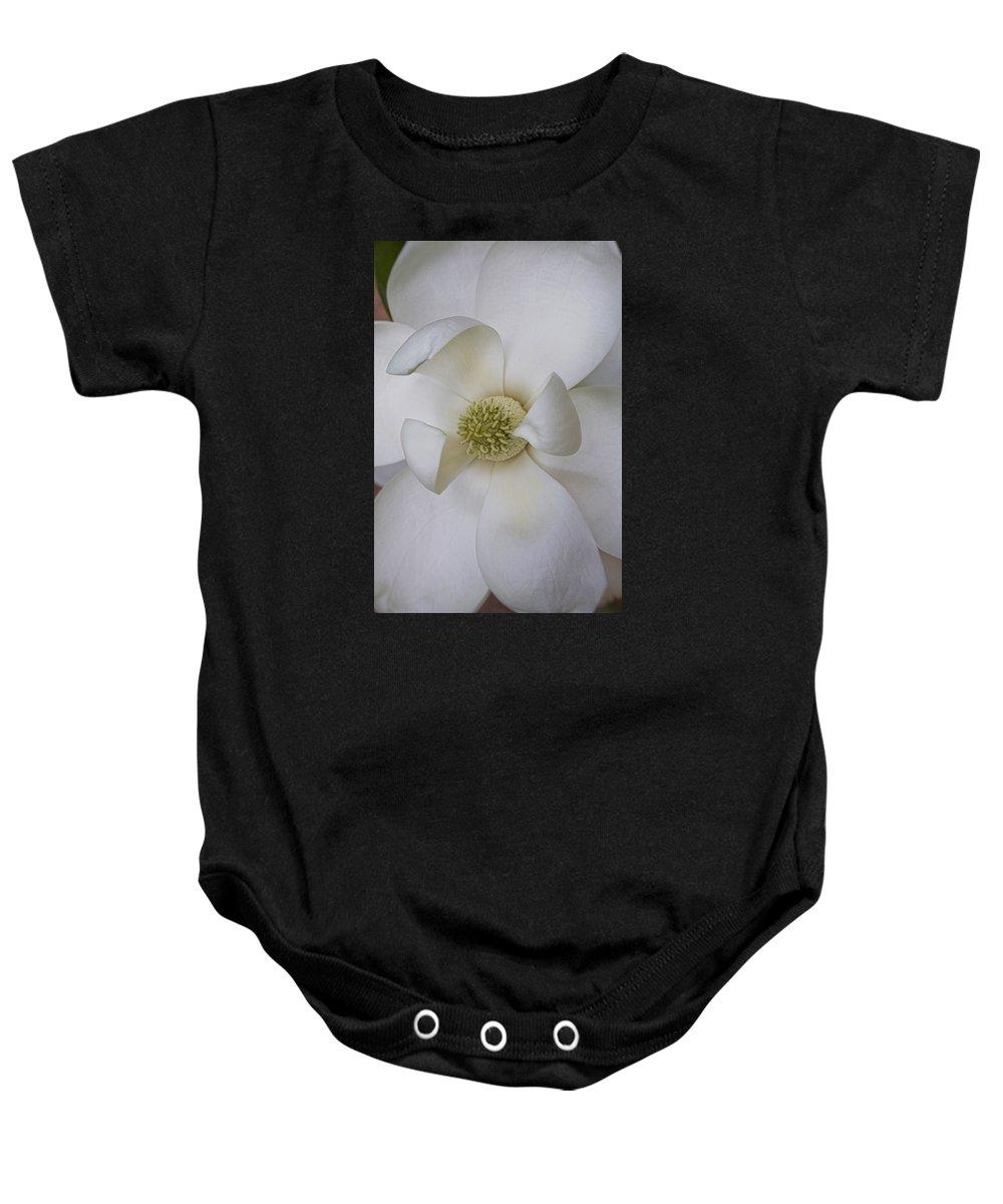 Magnolia Grandiflora Baby Onesie featuring the photograph Magnolia Blossom by Diane Macdonald