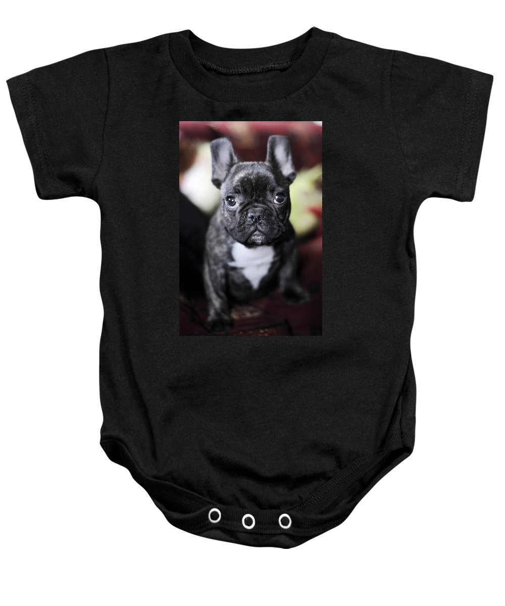 Dog Baby Onesie featuring the photograph Magoo II by Rafa Rivas